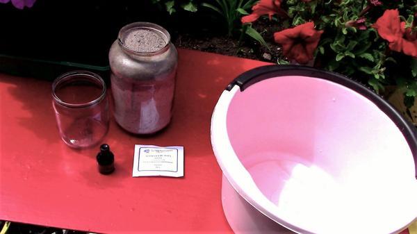 Как приготовить зольный раствор для подкормки томатов